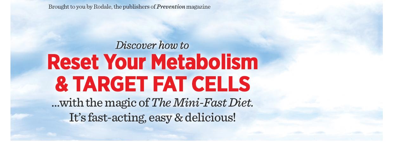 The Mini Fast Diet